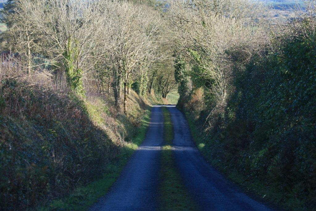 Irlandiya-na-avto