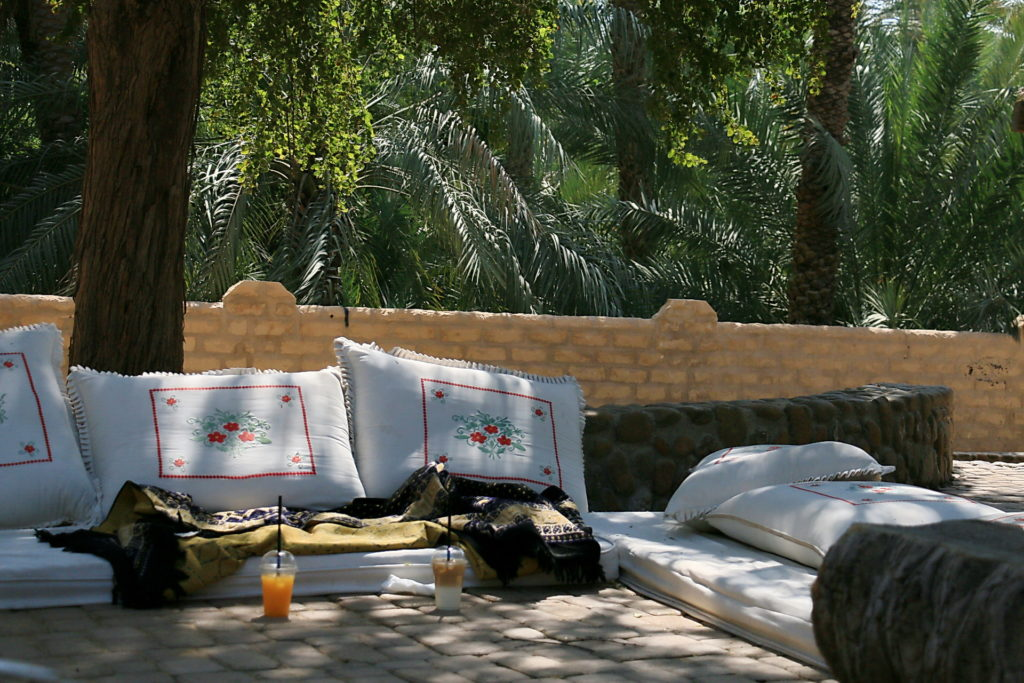 Al Ain Oasis واحة العين