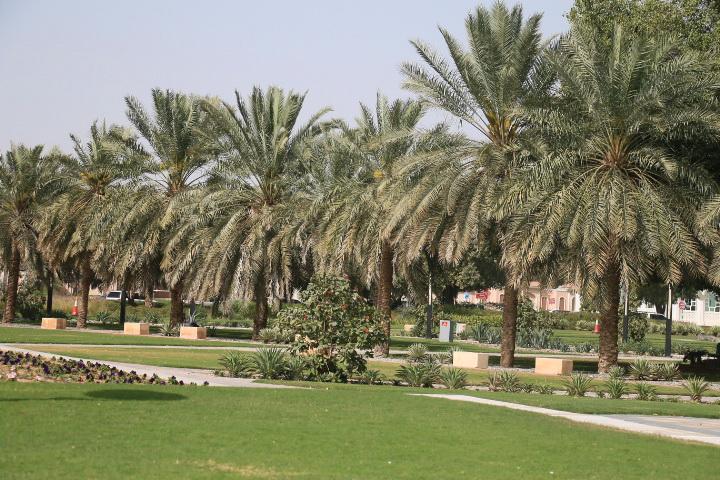 Al'-Ajn-OAE