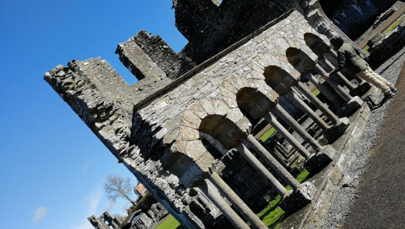 Меллифонтское аббатство Old Mellifont Abbey