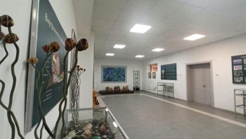 muzej-ulitok